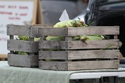 Midway Farmers Market 8